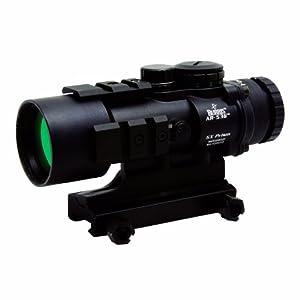 Burris 300210 AR-536 5x36 Sight (Black) by Burris