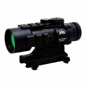 Burris 300210 AR-536 5x36 Sight (Black)
