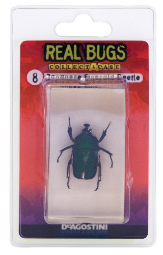 DeAgostini Real Bugs Japanese Emerald Beetle Bug