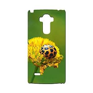 G-STAR Designer Printed Back case cover for OPPO F1 - G4576