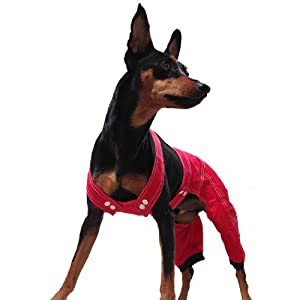 One Tail Four Paws Engineering Overalls Pet Apparel, XX-Large, Brilliant Red