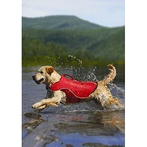 Kurgo Surf n' Turf Dog Lifejacket and Coat, Extra-Large, Red