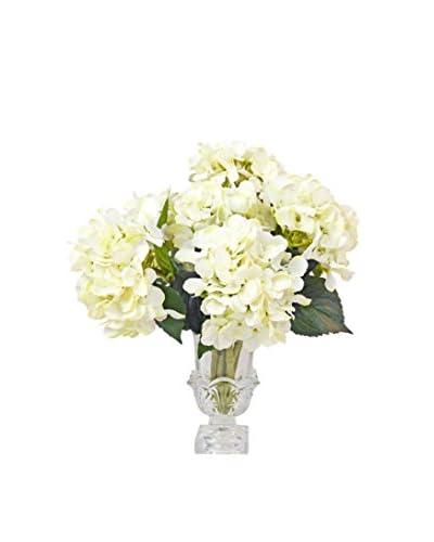 Creative Displays Hydrangea Water Vase, Crème