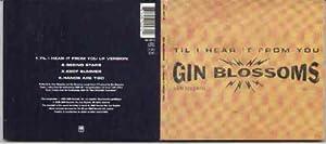 GIN BLOSSOMS - TILL I HEAR IT FROM YOU - CD (not vinyl)