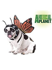 Animal Planet PET20101 Butterfly Dog Costume by California Costume Collections