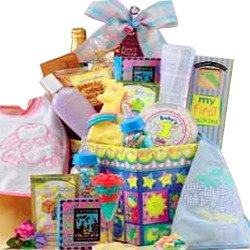 New Arrival Baby Gift Basket Sampler - Baby Girl Pink
