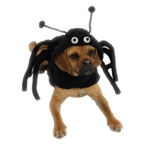 Spidey Paws Costume X Large - Pet Halloween Costum