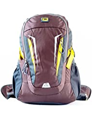 FBI Bagme 30 Ltr Capacity Nylon Brown Hiking Backpack With Removable Ventilation Back Frame System To Relieve...