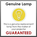Optoma SP.8LG01GC01 - LAMPOPTOMA084 - Replacement lamp for EX521; ES521; DX211; DS211