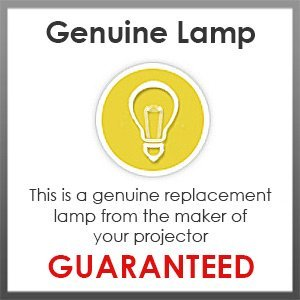 Spare Lamp For new D series