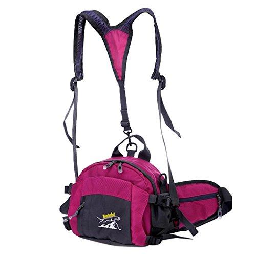 Panegy Borsa multifunzione 4 in 1: zaino, borsa a tracolla, marsupio, borsa a mano, per il viaggio, lo sport, la bici, il trekking, per uomini e donne rosa