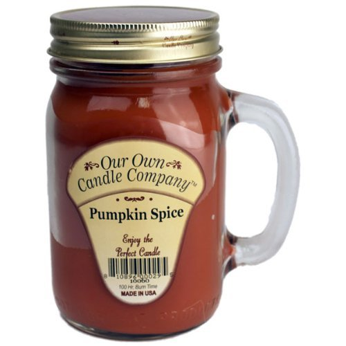 13oz PUMPKIN SPICE Scented Jar Candle (Our Own Candle Company Brand) Made in USA - 100 hr burn time