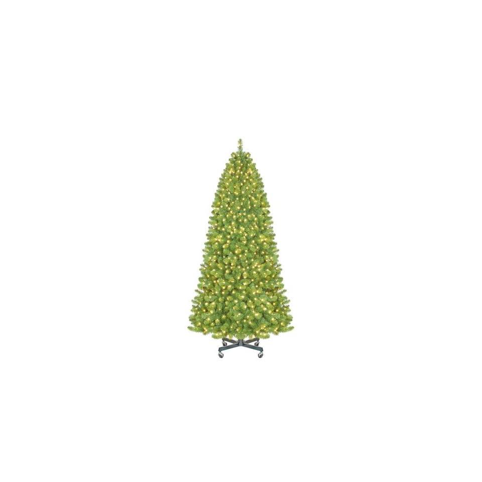 9 ft. Sequoia Pre Lit LED Slender Christmas Tree