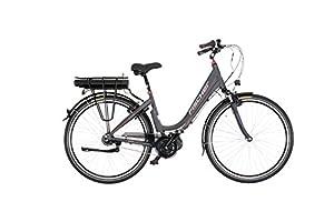 Fischer Damen E-bike City 7-Gang Proline ECU 1604, mehrfarbig, 28 zoll, 19163