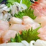 旬の海鮮福袋 朝とれセット:朝とれお刺身セット【風】