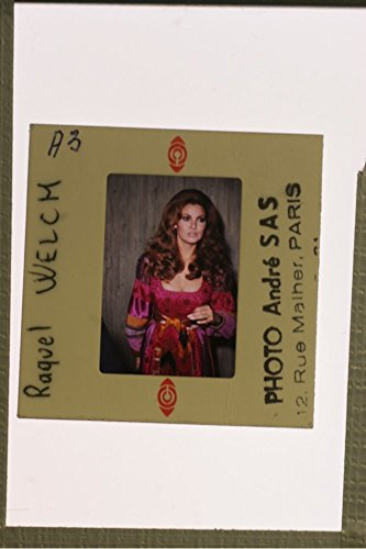 slides-photo-of-portrait-of-raquel-welch