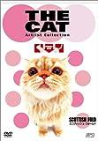 THE CAT ~スコティッシュ・フォールド~ [DVD]