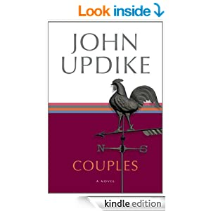 The literary elements in ap a novel by john updike