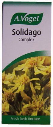 The Healthy Option Solidago Complex 50Ml