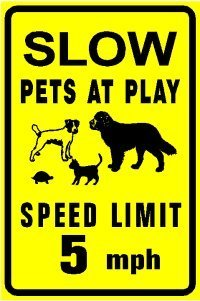 SLOW PETS AT PLAY dog cat turtle animal sign (Drive Slow Cats compare prices)
