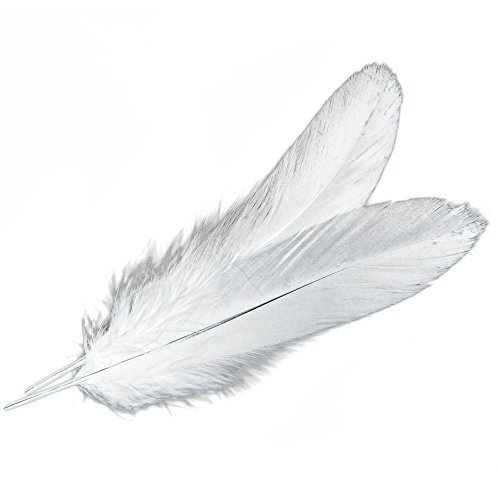 Sealike 50 pcs 10-15cm Real Natural Home Decor Goose Feather Great Party Wedding Decorations with a Stylus(White)