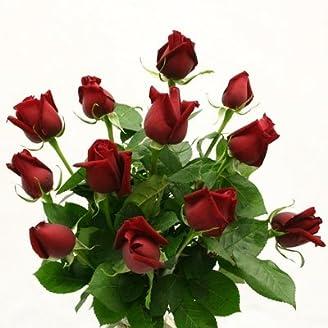 Falcon Farms Red Dozen Roses