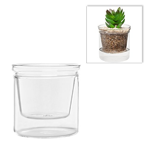 MyGift® Home Decorative Small Clear Glass Succulent Plant Holder / Freestanding Flower Display Pot
