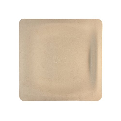 World Centric's 100% Biodegradable, 100% Compostable Plant Fiber 7 inch Square Plates (Package of 200) (Deli Paper Squares compare prices)