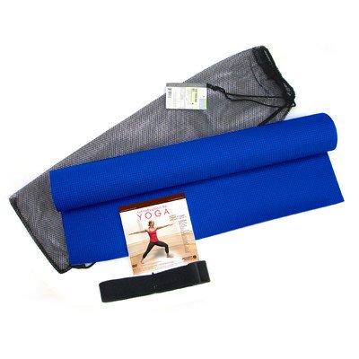gofit pro gym extreme manual