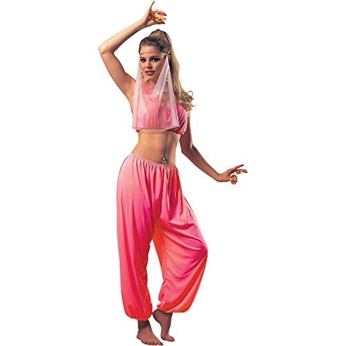 Arabian Princess Adult Costume - Standard