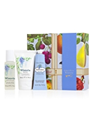 Crabtree & Evelyn® Wisteria Little Luxuries