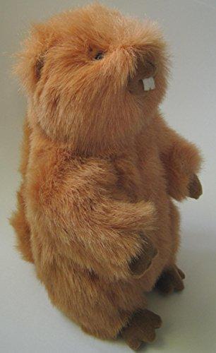 Kohl's Plush Beaver