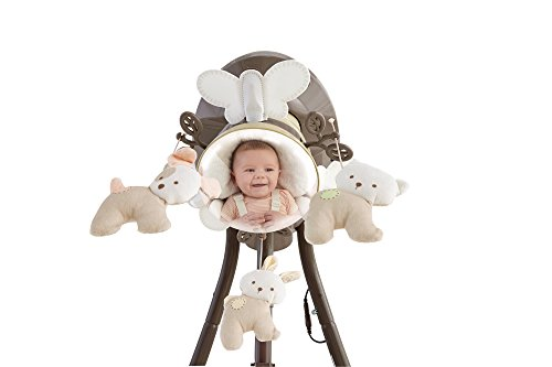 Fisher Price Cradle 'n Swing – My Little Snugapuppy