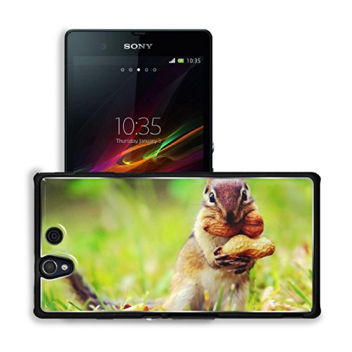 Ardilla Cacahuate Squirrel Peanut Pets Sony Xperia Z 5.0 C6603 C6602 Snap Cover Premium Aluminium Case Customized Made To Order Support Ready 5 4/8 Inch (140Mm) X 2 7/8 Inch (73Mm) X 7/16 Inch (11Mm) Luxlady Sony Xperia Z Cover Professional Xperia_Z Cases