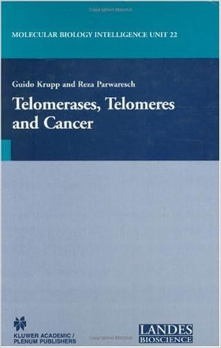 Telomerases, Telomeres and Cancer (Molecular Biology Intelligence Unit)