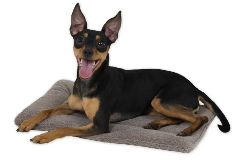 Aspen Pet Kennel Mat, 19 By 11-Inch front-52460