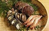 海鮮バーベキューAセット(アワビ3個・サザエ3個・ハマグリ6個・ホタテ3個・エビ(解凍)3個)
