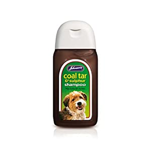Best Coal Tar Shampoo For Dogs