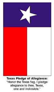 Amazon.com: CHART TEXAS FLAG & PLEDGE: Toys & Games