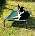 Coolaroo Steel-Framed Pet Bed, Brunswick Green, Medium by Gale Pacific, USA