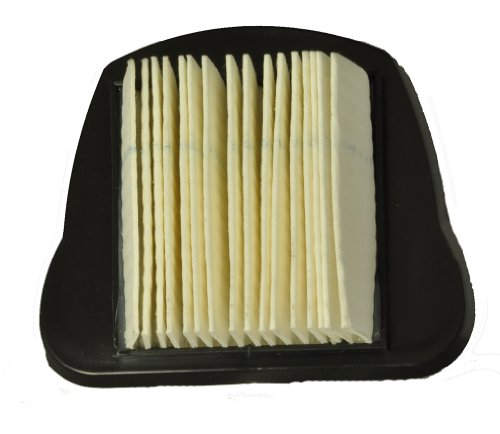 Dirt Devil Dust Devil Hand Vac Filter front-618647