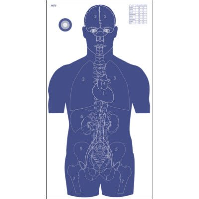 Vital Anatomy Target (25 Pack) (Anatomy Targets compare prices)