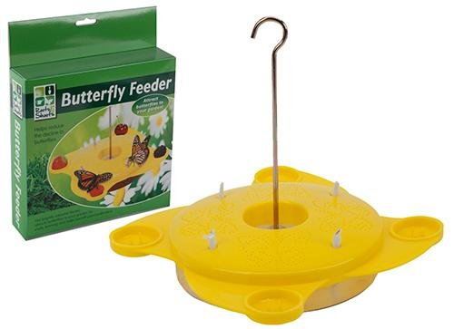 Yellow-Butterfly-Feeding-Station