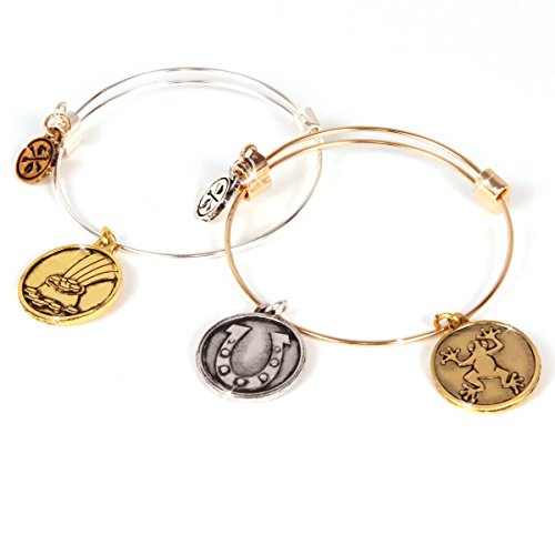 Charmazing Let's Get Started Bracelets - Lucky Collection 2