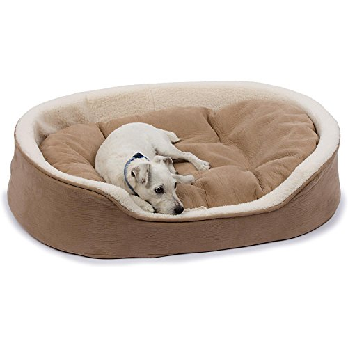 Petco-Oval-Tan-and-Cream-Lounger-Dog-Bed
