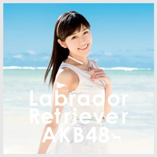 AKB48 ラブラドールレトリバー