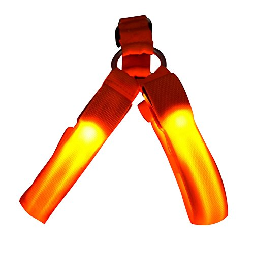 Freerun LED Nylon Dog Cat Collar Dog Flashing Light Harness Pet Safety Led Leash Rope Belt - Orange, M (Diy Dog Harness compare prices)
