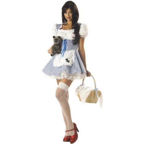 Miss Dorothy Adult Costume - Small (6-8) - Adult Costumes
