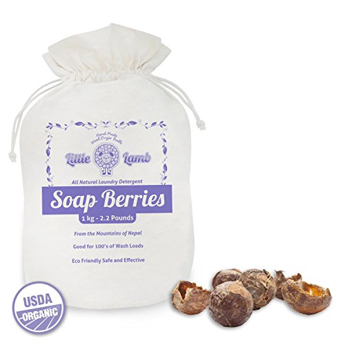 2.2Lb Bag Of 100% Natural Soap Nuts- Essential For All Eco-Friendly Laundry Supplies. Perfect Laundry Detergent For Cloth Diapers, Totally Organic Containing Zero Harsh Chemicals