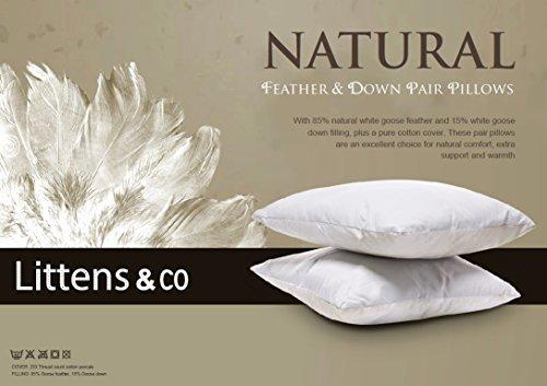 4-luxury-white-goose-feather-down-pillows-2-pairs